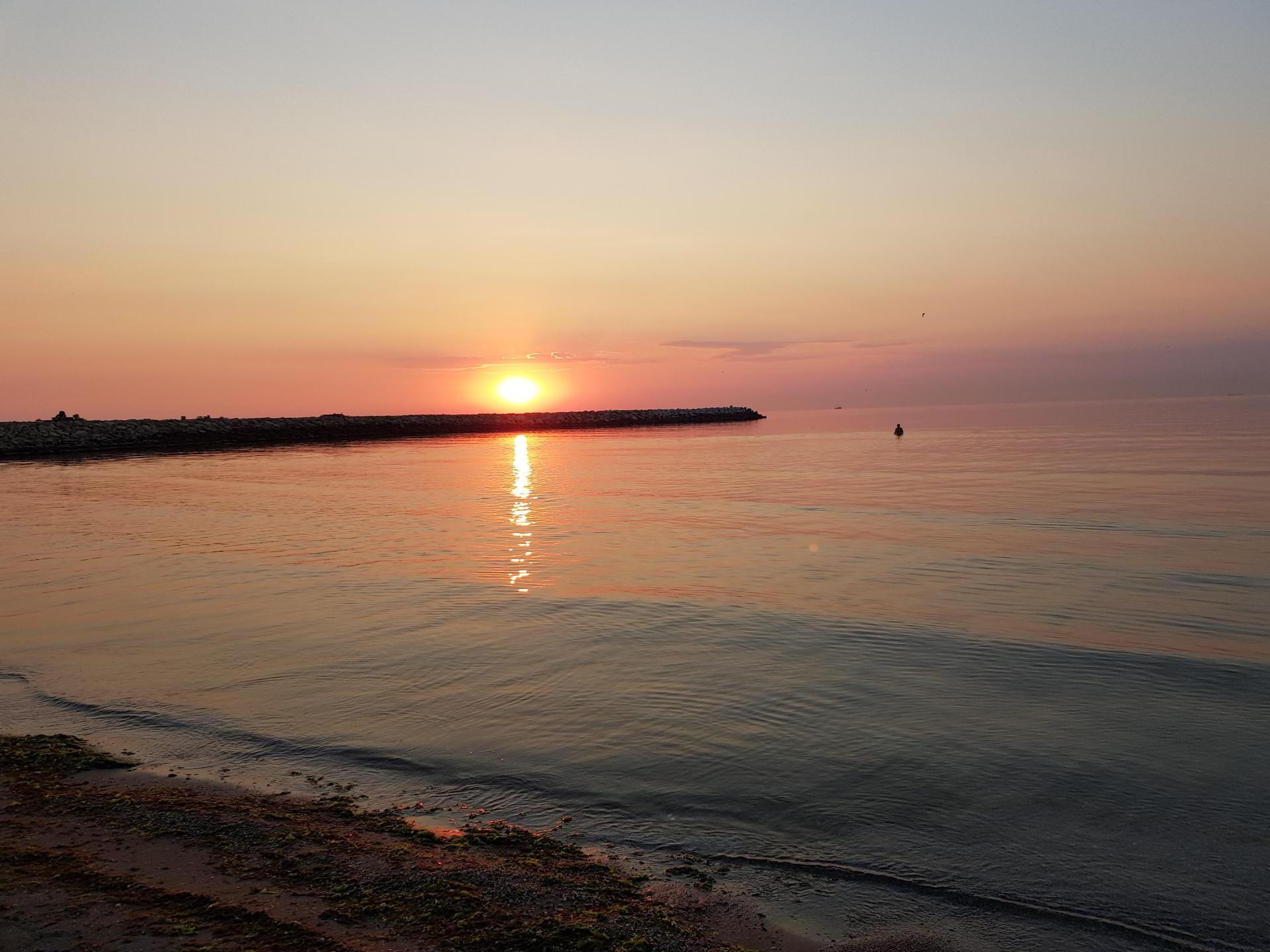 Ziua Internațională a Mării Negre- de la vânătoarea de delfini la o viitoare insulă de gunoaie