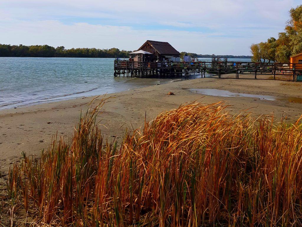 Delta Dunarii toamna