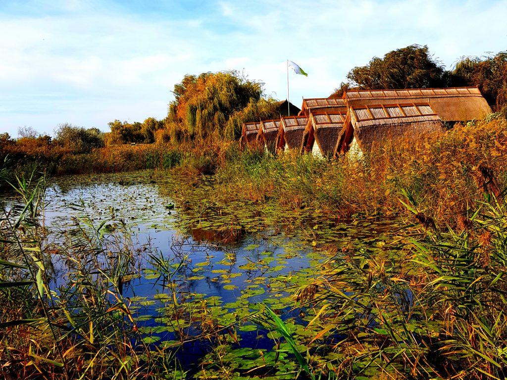 Delta-Dunarii-toamna