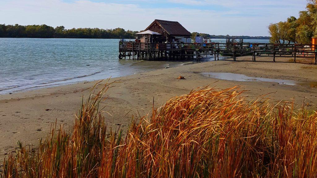 Delta Dunarii Ziua Rezervatiilor Naturale