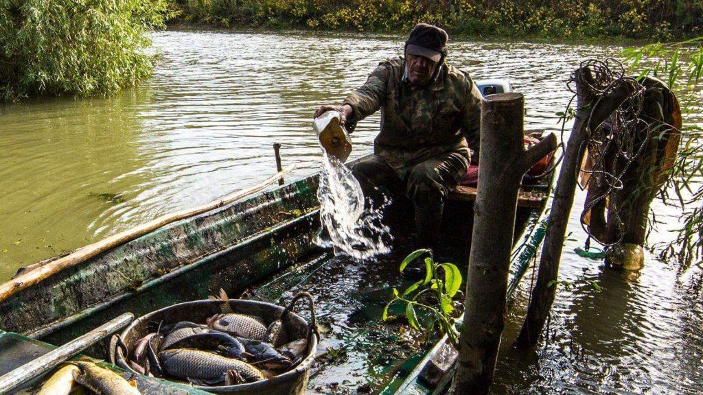 Balık yemek Sf Gheorghe
