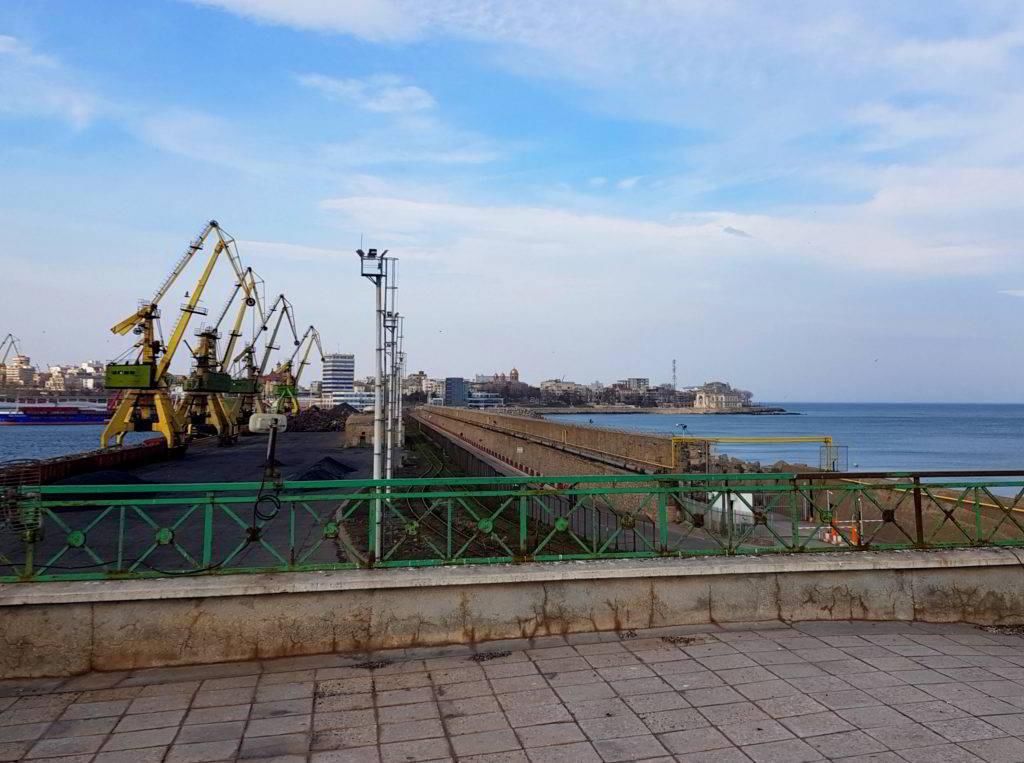 Cormoran motat Portul Constanta