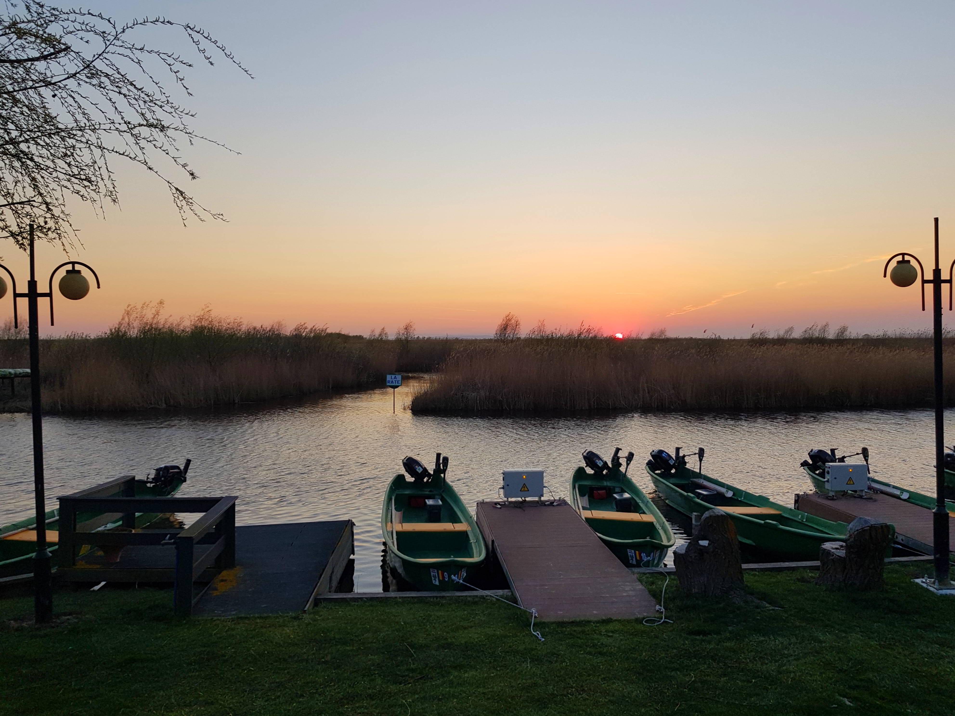 Barci Holbina trei bibani