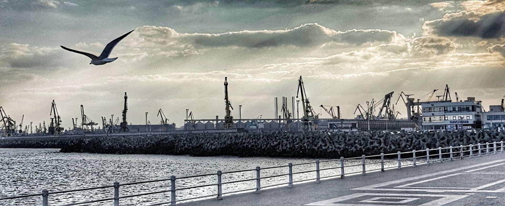 Cuibul Reginei, cadoul inginerilor din Portul Constanța pentru familia regală