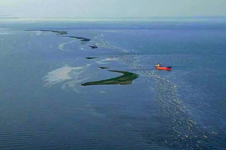Insula K, insula pasarilor