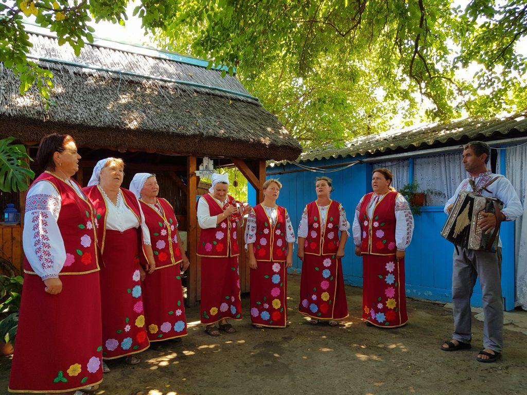 Gospodarie in satul Letea