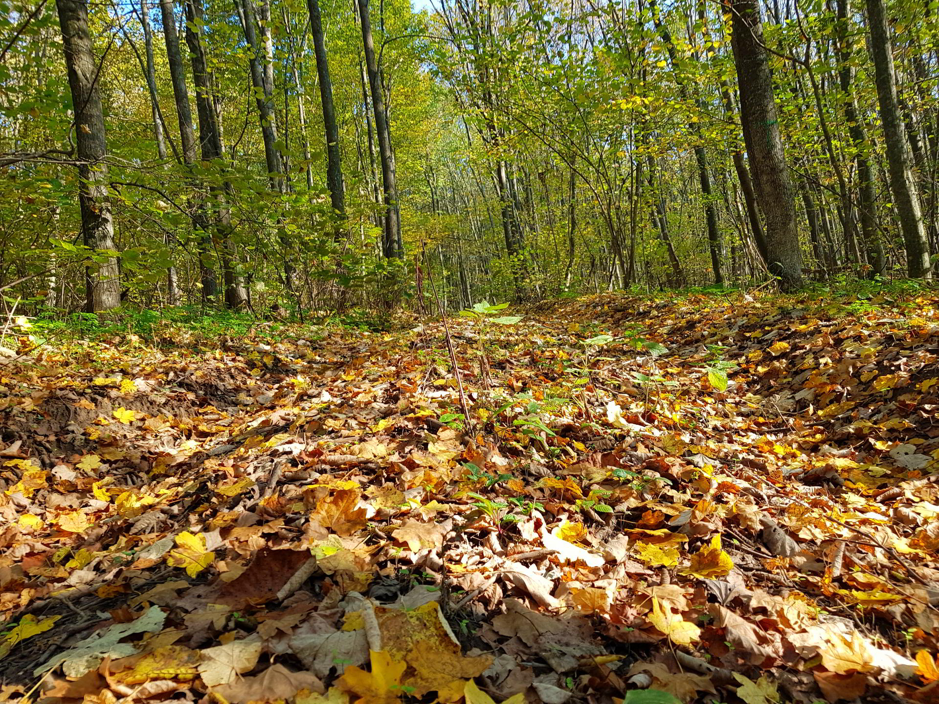 Dobrogea de Nord, locul ideal pentru excursii și trasee montane în această toamnă