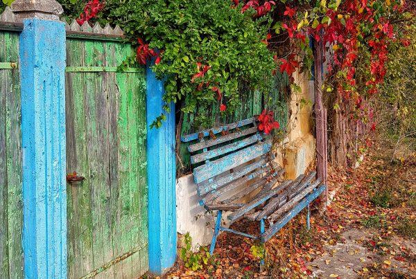 Sarbatori iarna Dobrogea