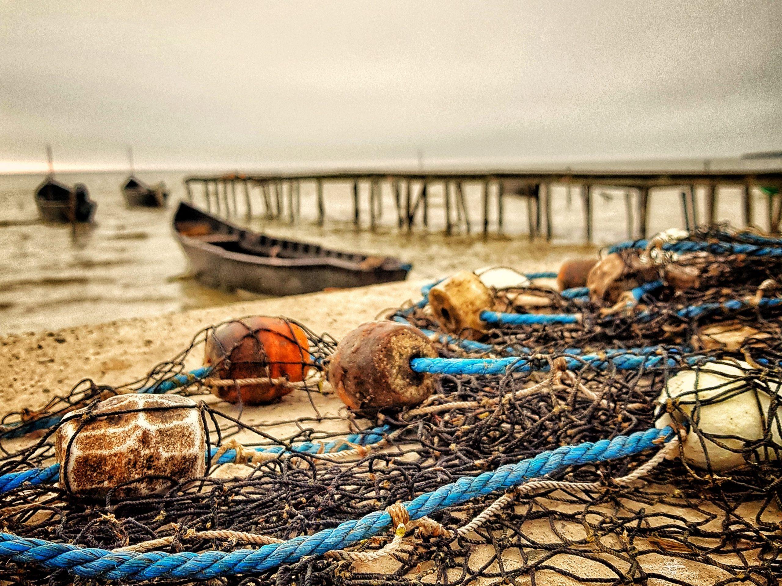 Perioadele și zonele de prohibiție la pescuit în Delta Dunării pentru 2020