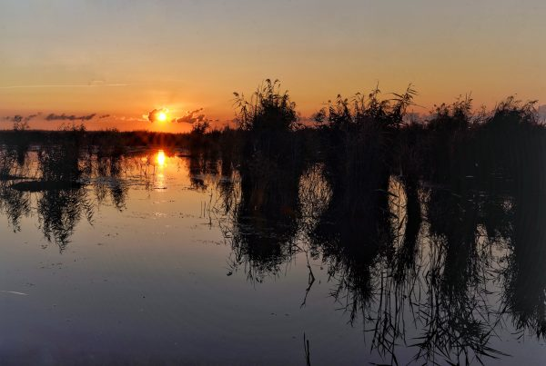 Salvare turism Delta Dunarii