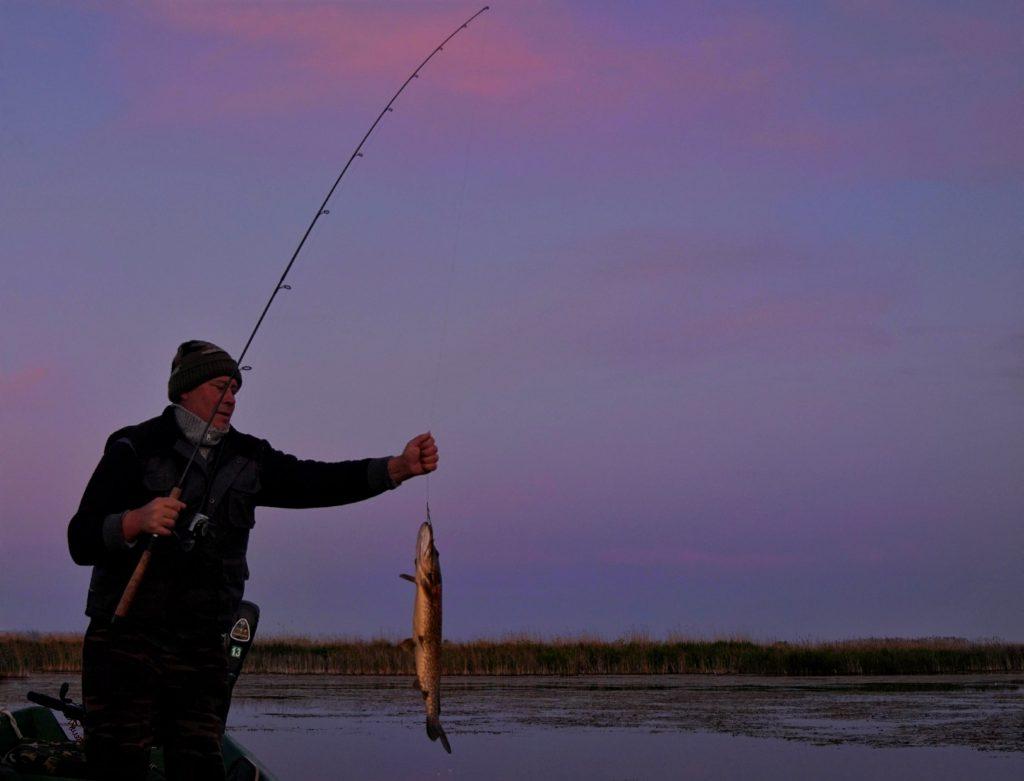 Pescuit-Delta-Dunarii-ridicare-restrictii-prohibitie