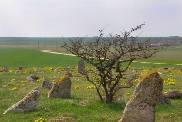 Cimitir tataresc sat Hagieni Dobrogea