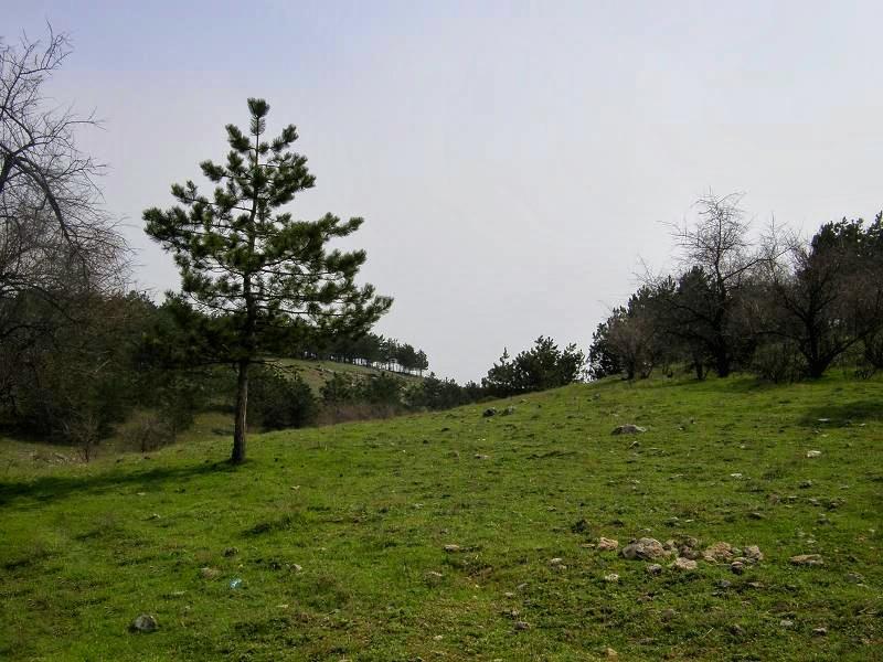 Satul Hagieni Constanta