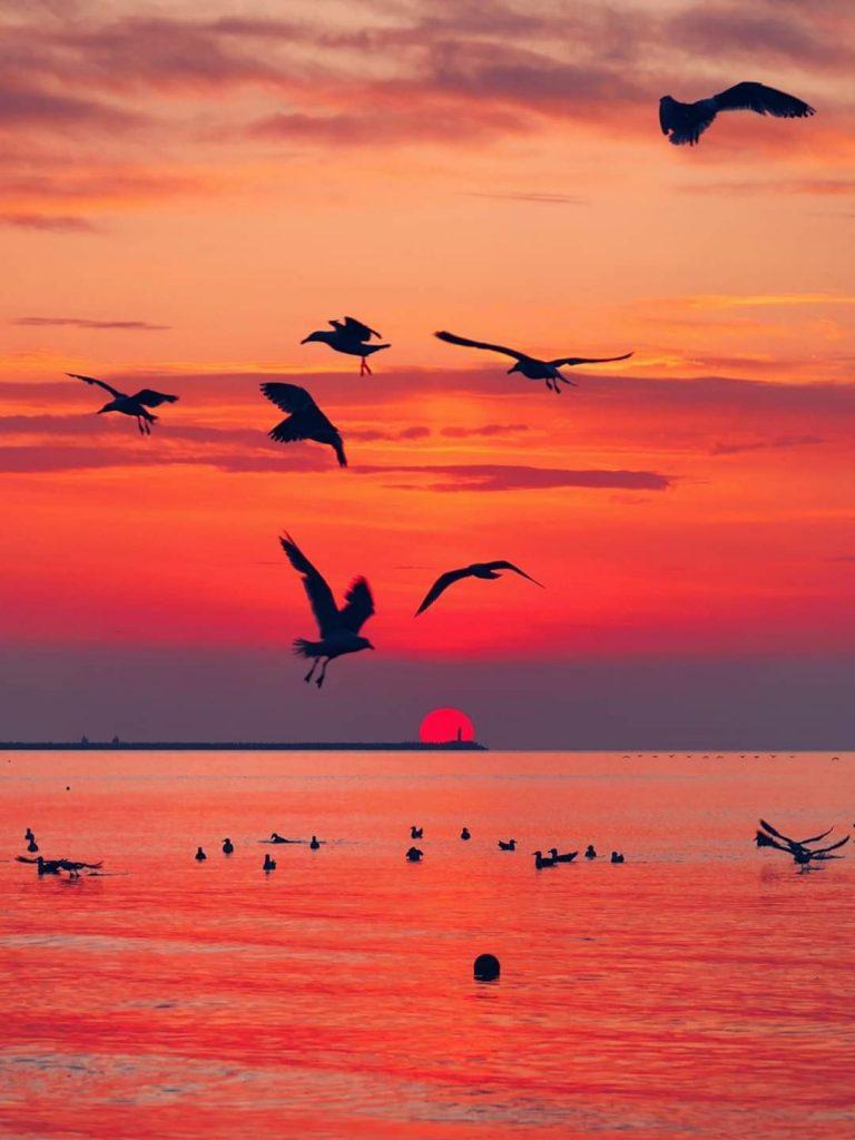 rasarit-Marea-Neagra-fotografie-Vlad-Eftenie-iunie-2020