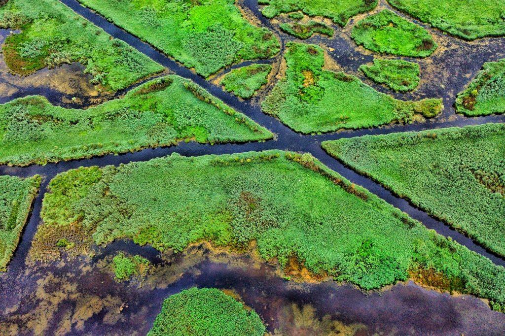 trasee-verzi-delta-dunarii-ecoturism-caiace-canoe-biciclete-nautice