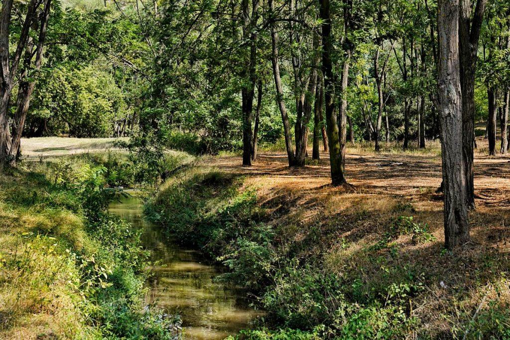 gura-dobrogei-rezervatie-naturala-zona-protejata