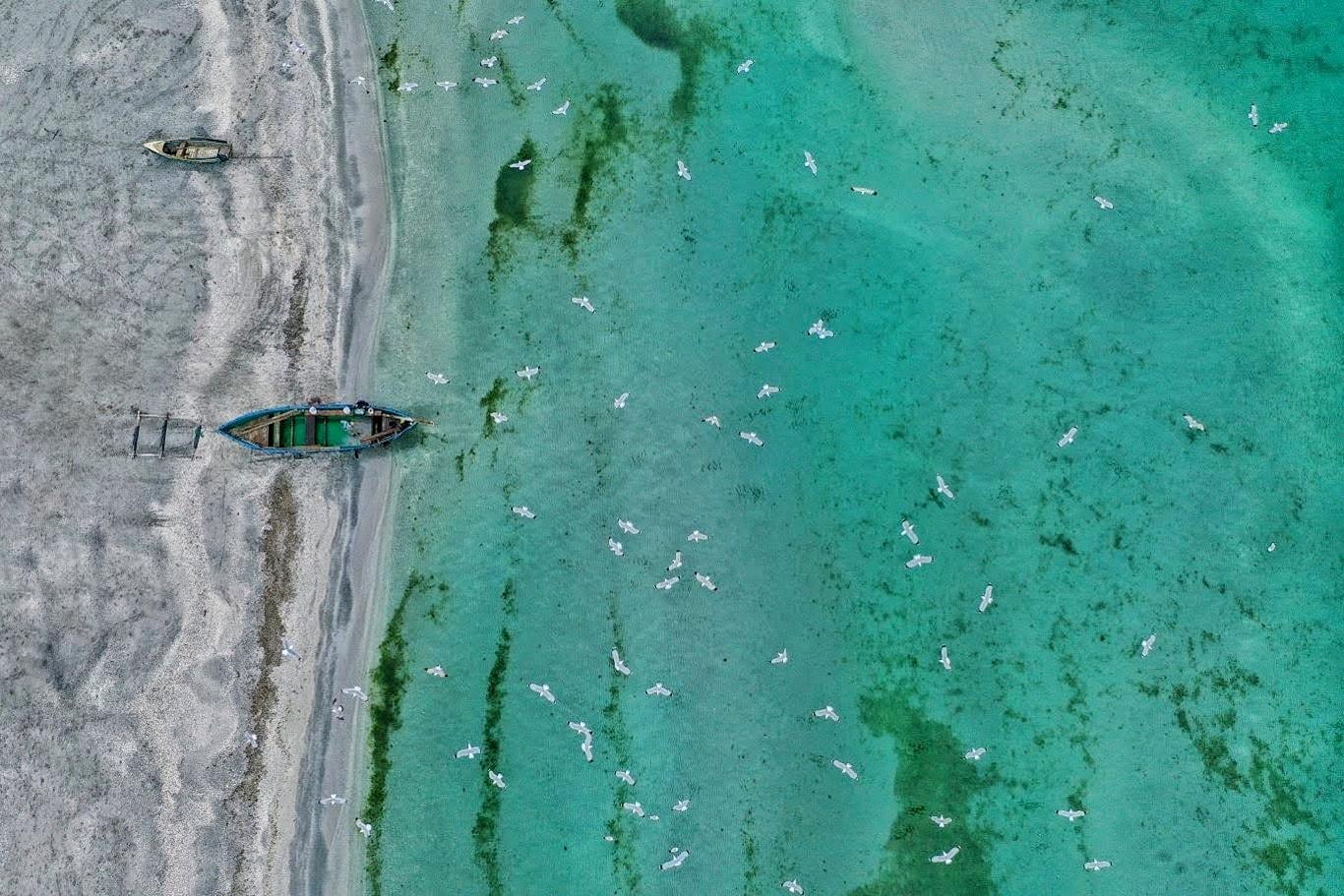 Acvacultura offshore în Marea Neagră, o afacere finanțată cu fonduri UE