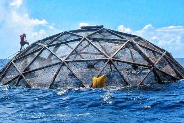 fermele-marine-offshore
