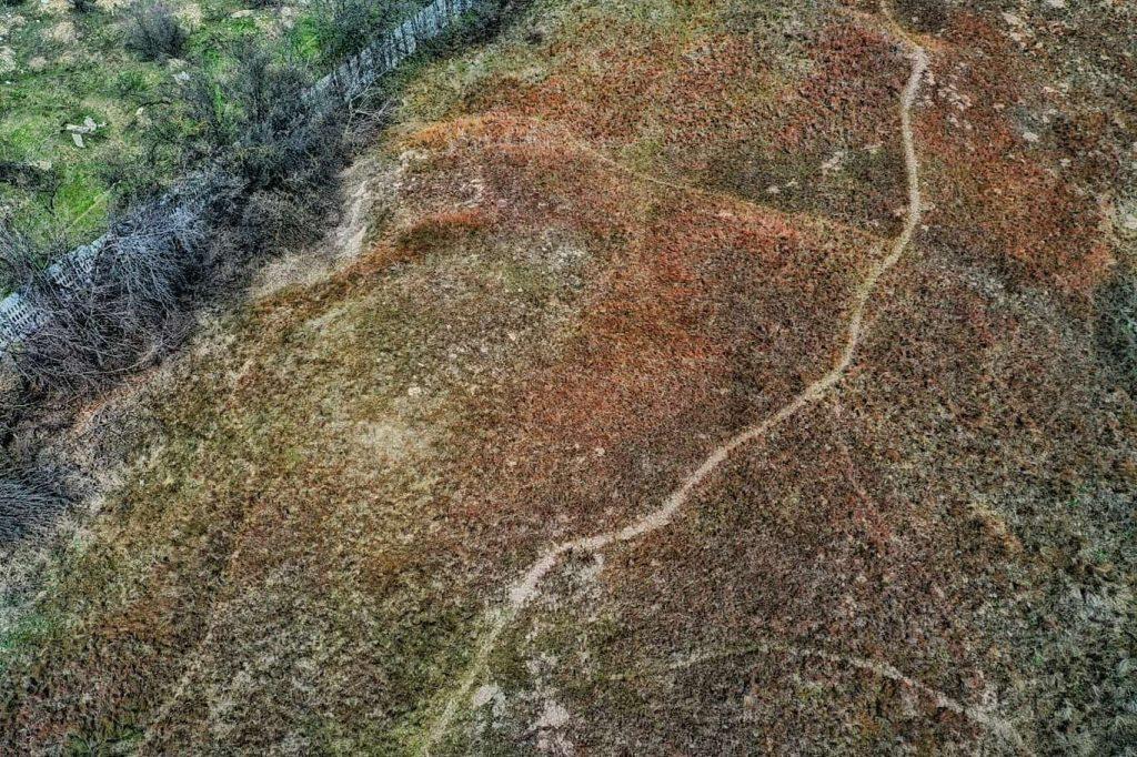 dunele-marine-de-la-agigea-rezervatie-statiune-cercetare