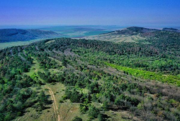 rezervatia-allah-bair-comuna-crucea-trasee-turistice-drumetii-rezervatie-naturala