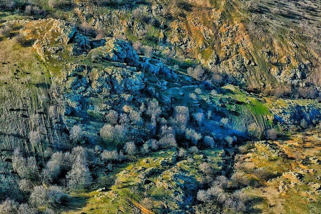 dealul-consul-prima-rezervatie-naturala-din-romania