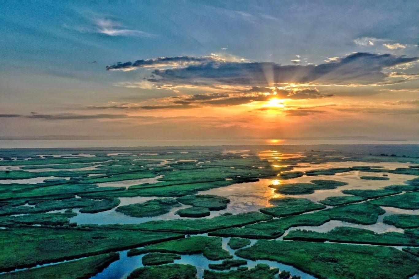 Excursiile de o zi în Delta Dunării afectează păsările și sunt catastrofale pentru mediu