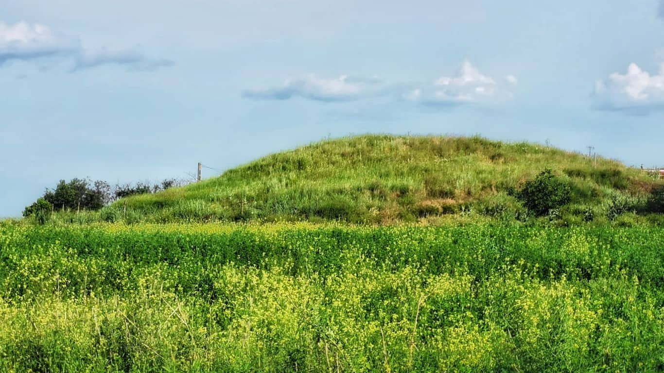 Tumulii de la Crama Histria ar putea oferi descoperiri spectaculoase