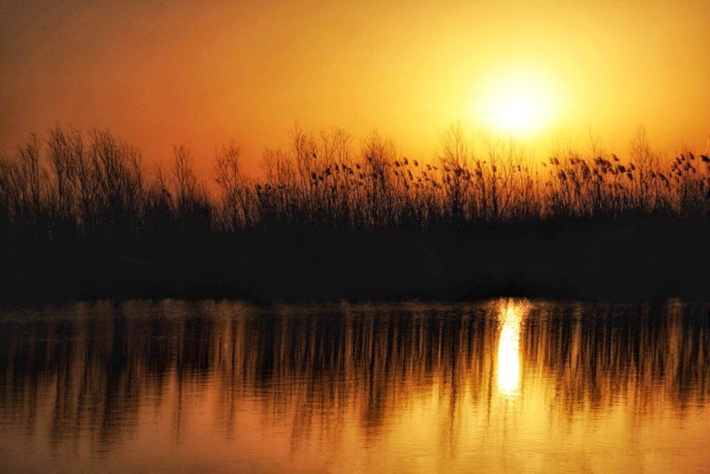 toamna-in-delta-dunarii