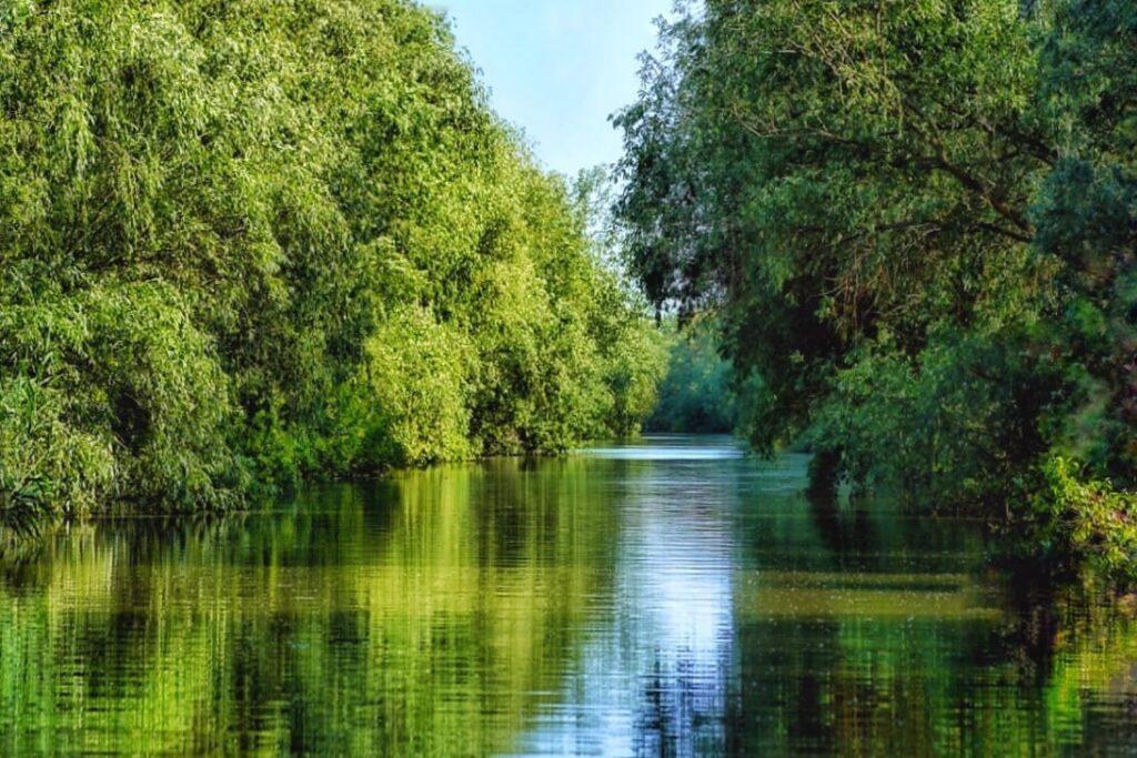 ziua-deltei-dunarii-2021