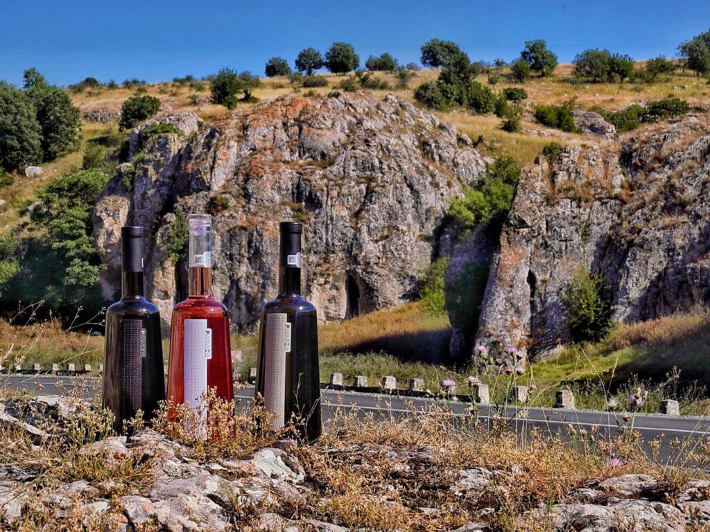 vinuri-gama-pagaia-crama-hamangia