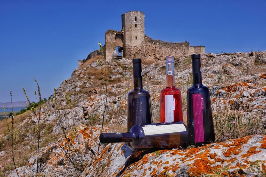 vinuri-pagaia-crama-hamangia
