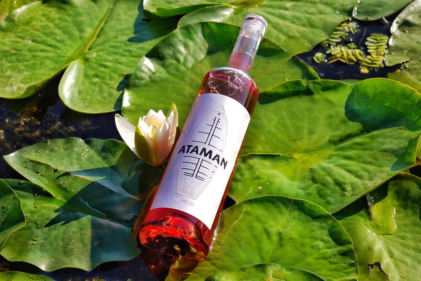 Vinurile Cramei Hamangia au povești inspirate din istoria Deltei Dunării